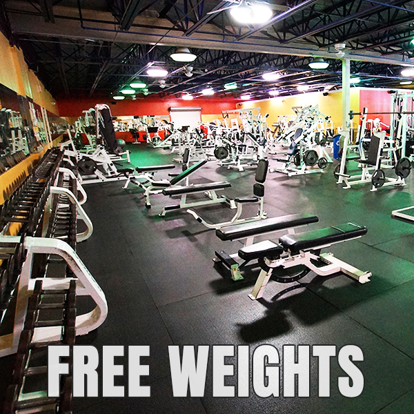 Tons of Free Weights